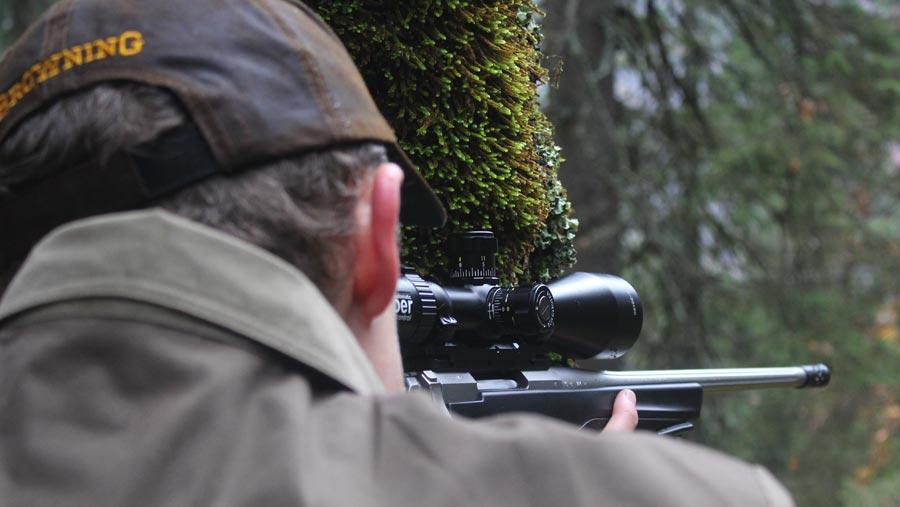 La chasse au grand gibier : ici la chasse au chamois en Autriche
