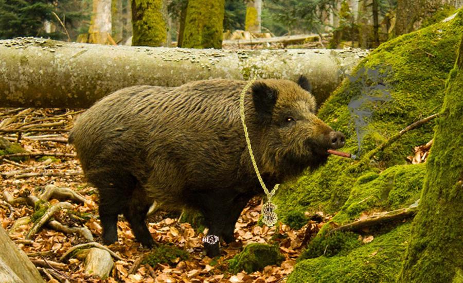 La chasse : une activité qui booste l'économie - Browning Blog