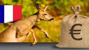 Illustration de l'impact économique de la chasse en France