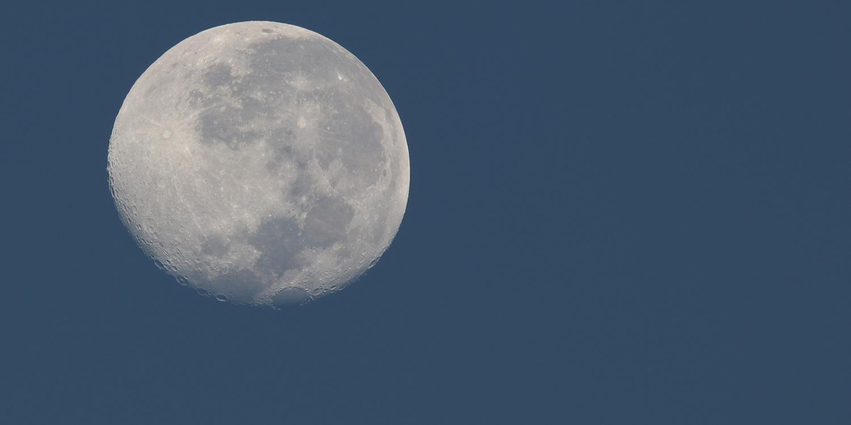 Browning blog : l'importance de la lune pour chasser le chevreuil à l'approche